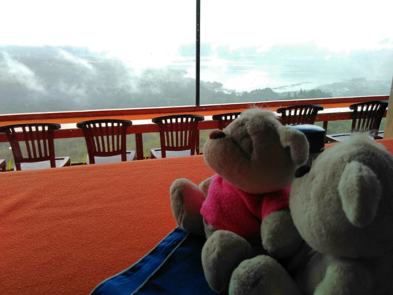 2bearbear enjoying views of Mount Batur and Lake Batur from Kintamani