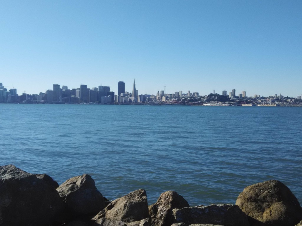 Views of San Francisco City from Treasure Island
