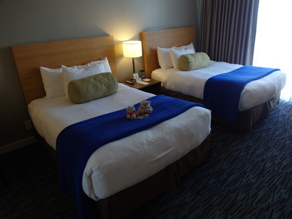 Double Bed in Superior Room Cova Hotel San Francisco