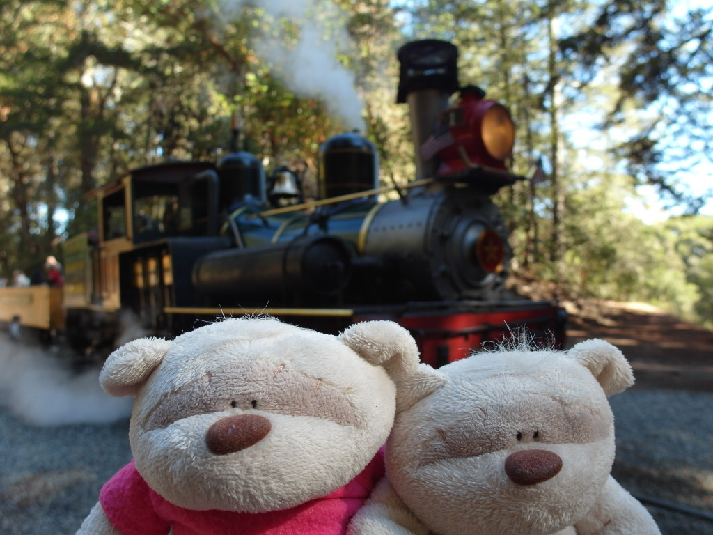 Roaring Camp Redwood Forest Steam Train