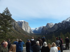 Everyone admiring Tunnel View at Yosemite National Park