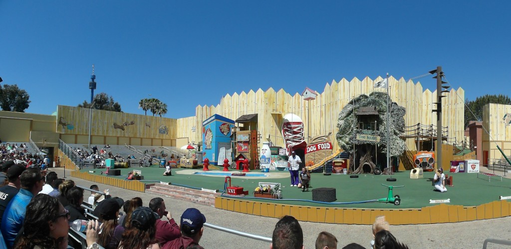 Panorama of Pets Rule show