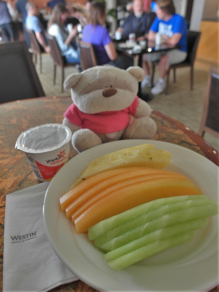 Bear acting healthy with fruits and yoghurt