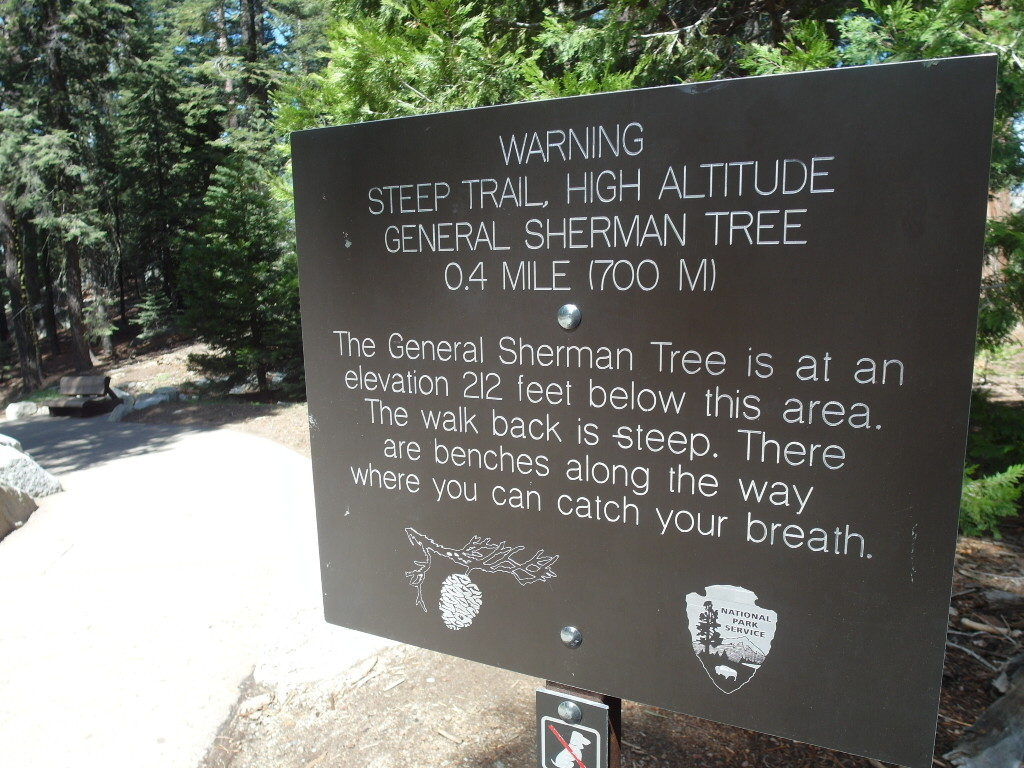 Warning @ General Sherman Tree Trail