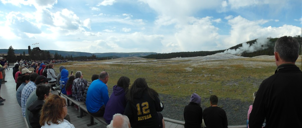 Panoramic View Old Faithful Geyser Yellowstone National Park