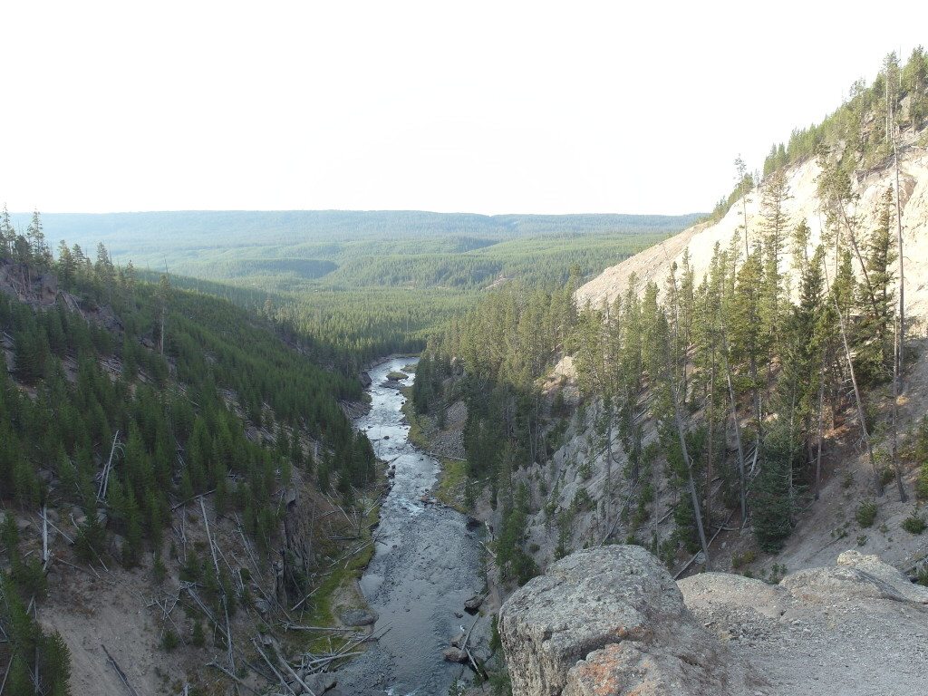 View from Gibbon Falls Yellowstone National Park