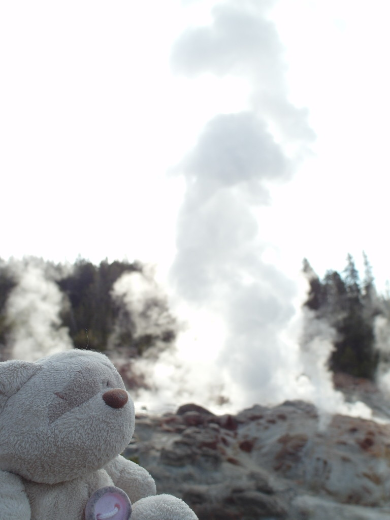 Steamboat Geyser Yellowstone National Park
