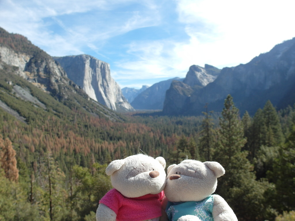 2bearbear @ Yosemite Again!