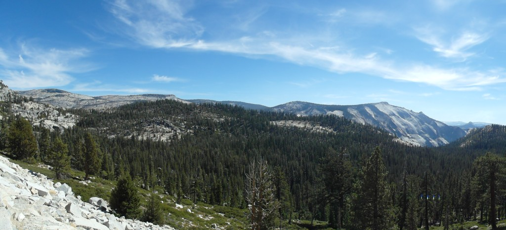 Panorama enroute in Yosemite National Park