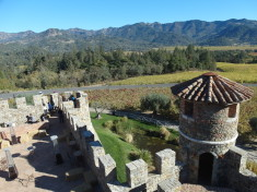 View of vineyard from tower of Castello di Amorosa Napa Valley