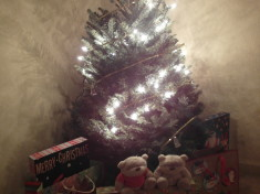 2bearbear and Christmas Tree