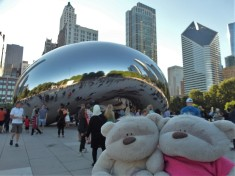 2bearbear @ The Bean (aka Cloud Gate) Chicago