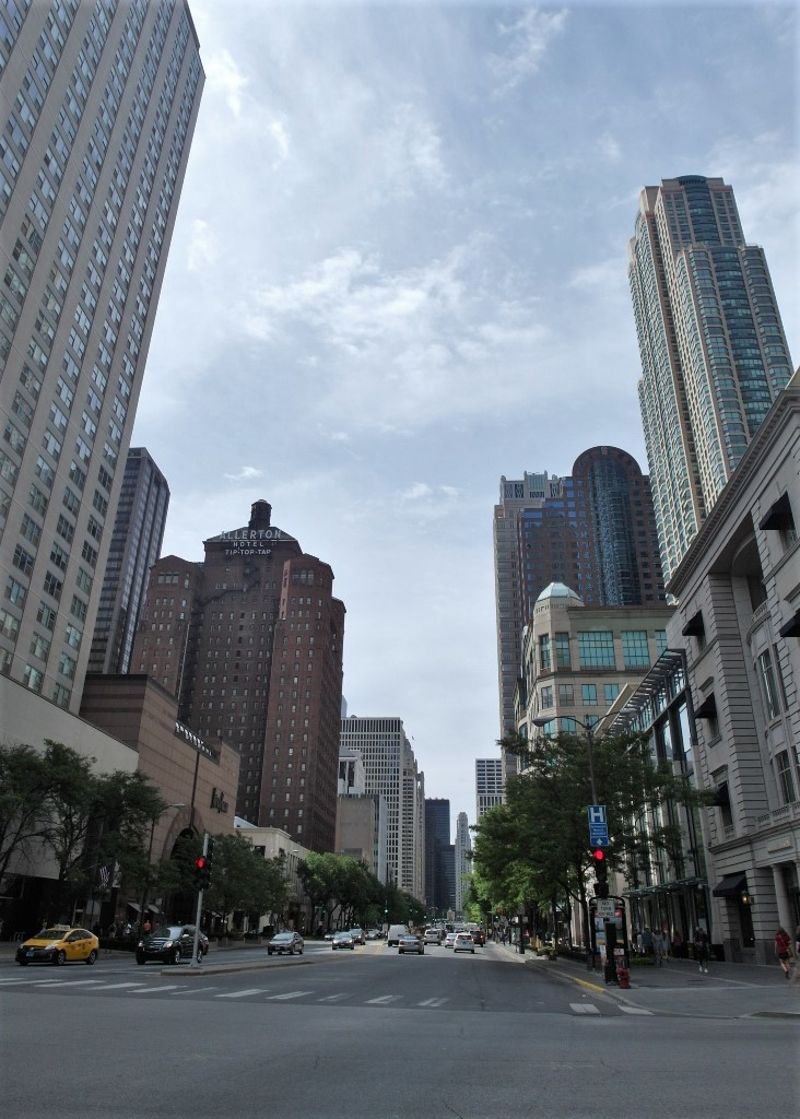 Magnificent Mile - Shopping Street of Chicago