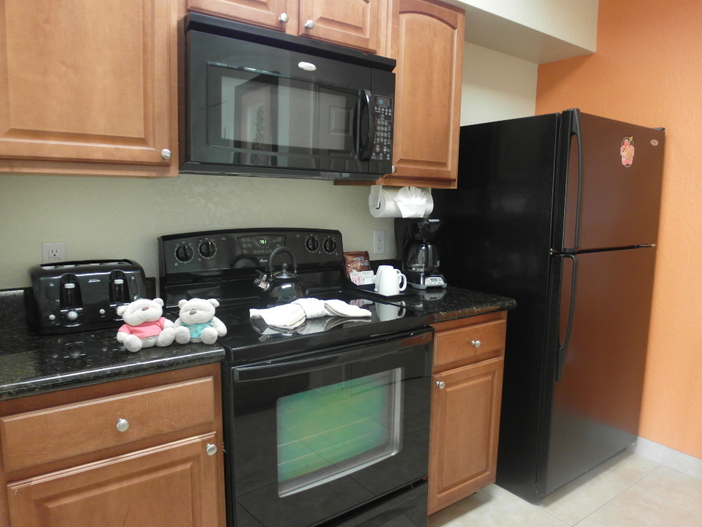 Fully Equipped Kitchen Lake Buena Vista Resort Village & Spa