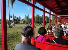 Train moves close to the animals