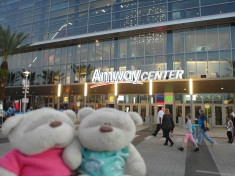 2bearbear @ Amway Center - Home of the Orlando Magic