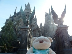 Hogwarts - Harry Potter and the Forbidden Journey Simulation Ride