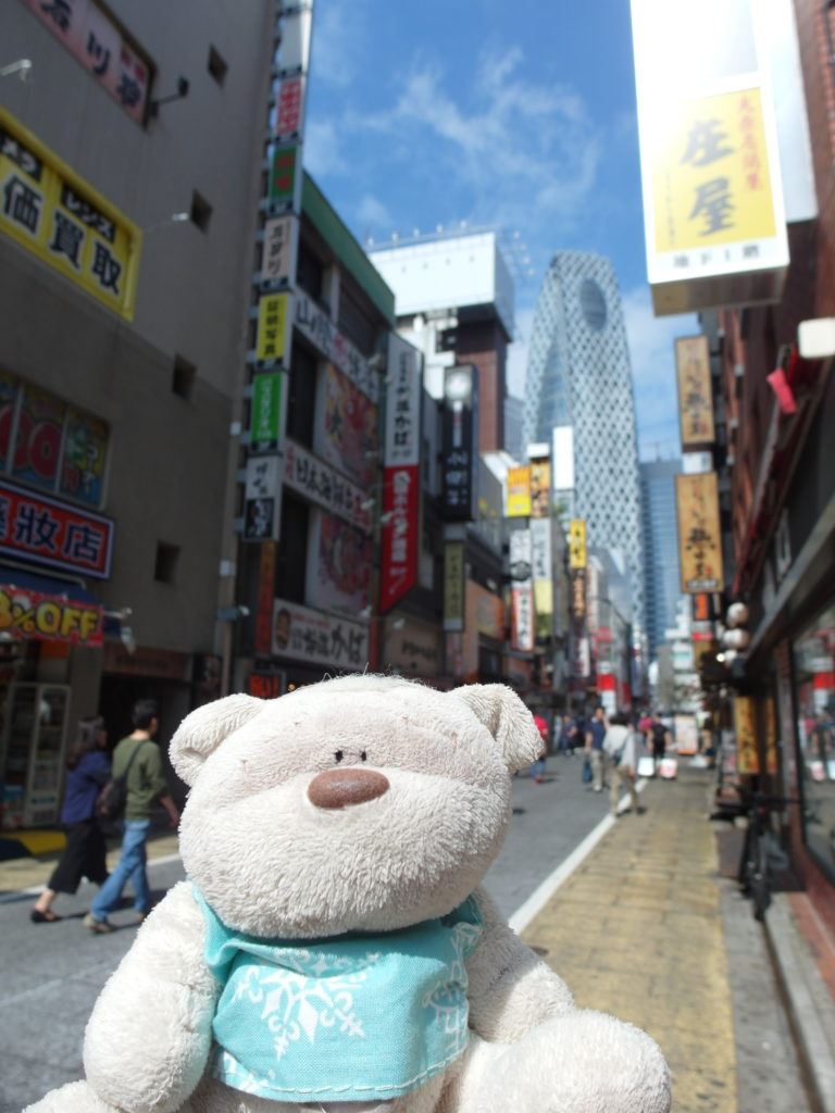 SAM 7733 e1509976546843 768x1024 15 Travel Experiences and Things to do in Tokyo Japan!