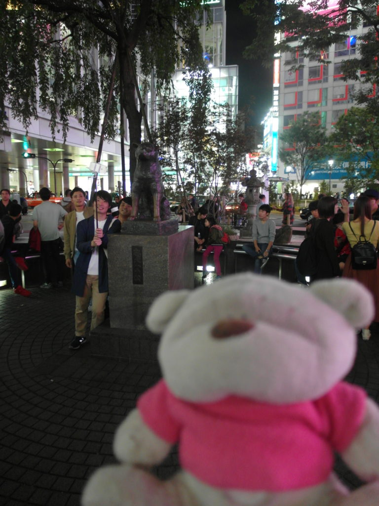 SAM 7784 e1509976401320 768x1024 12 Days of Japan Travels: Tokyo Metropolitan Government Building Shinjuku Pablo and Shibuya Day 2!
