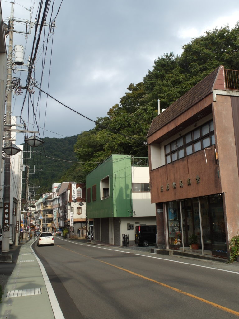 SAM 7854 e1510362793602 768x1024 12 Days of Japan Travels: Mount Fuji, Lake Kawaguchi, Sanrokuen and Fujizakura Inn Reviews Day 3!