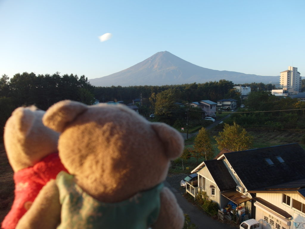 2bearbear enjoying views of Mount Fuji from Fujizakura Inn