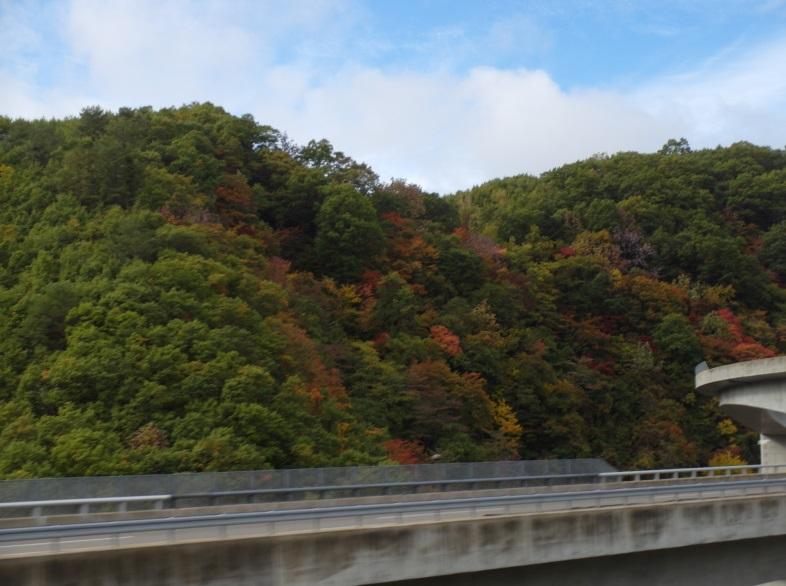 Untitled91 12 Days of Japan Travels: Takayama Hidagyu (Hida Beef) and Bus Ride to Nagoya Day 7!