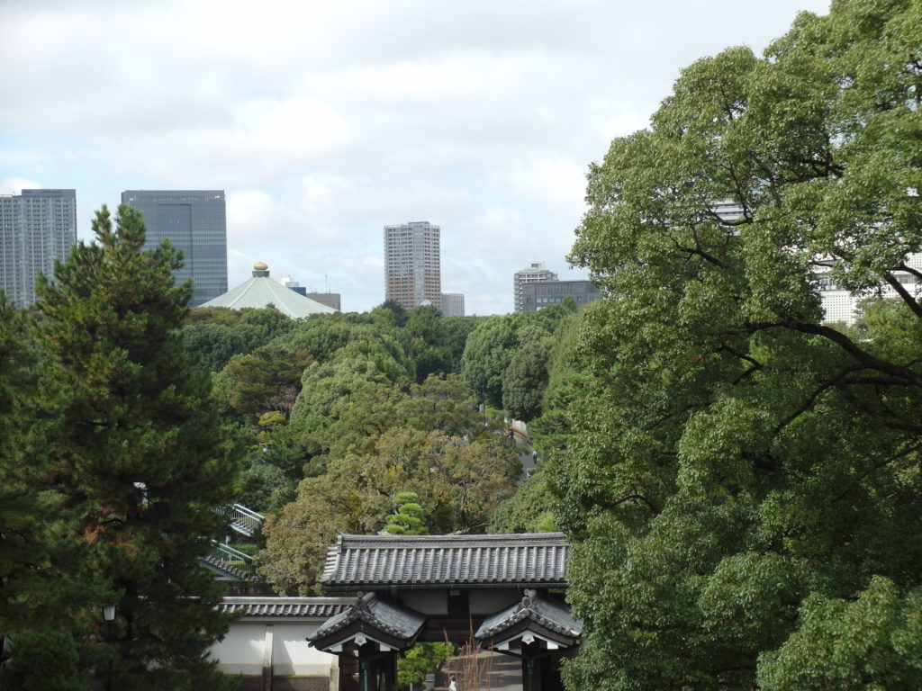 SAM 7681 1024x768 12 Days of Japan Travels: Tokyo Jimbocho and Imperial Palace Gardens Day 1